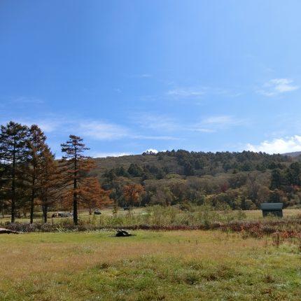 秋のカヤの平高原