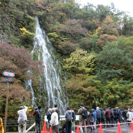 2019幻の滝 樽滝~秋~