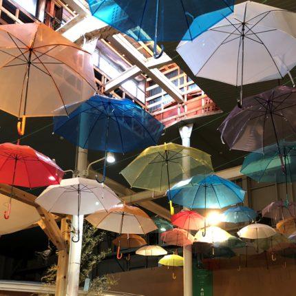 2020ファームス雨傘