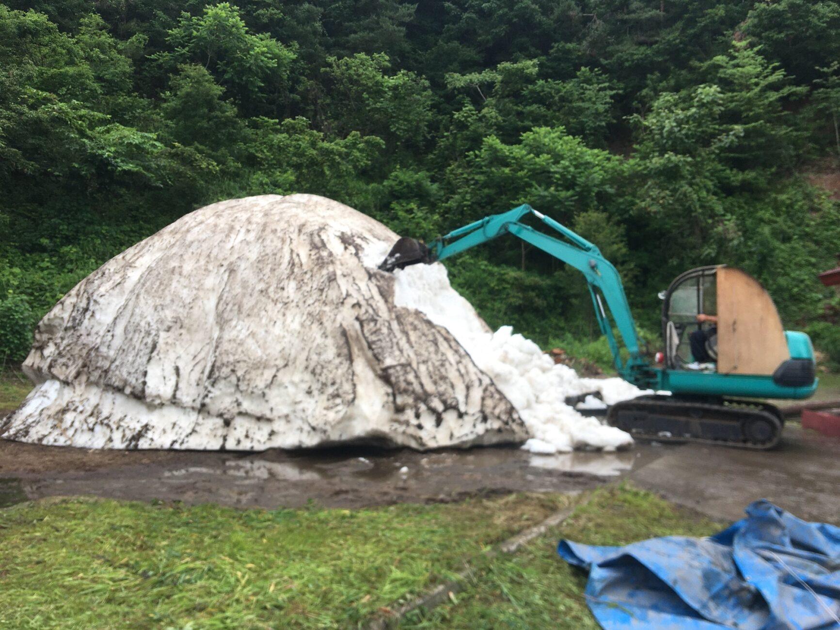 木島平村内山地区の雪室から雪中貯蔵酒を掘り出す様子
