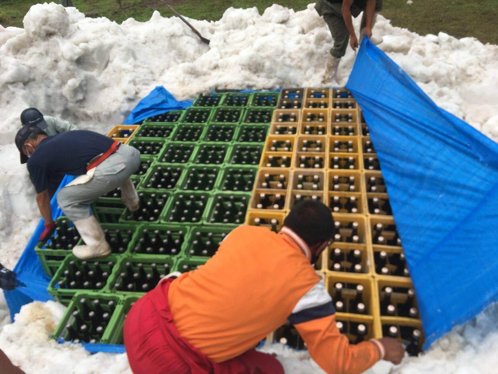 木島平村内山地区の雪室から雪中貯蔵酒を掘り出す様子、酒の瓶が見えた。